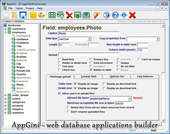 AppGini - web database applications builder