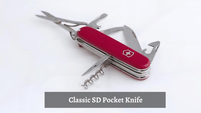 Classic SD Pocket Knife