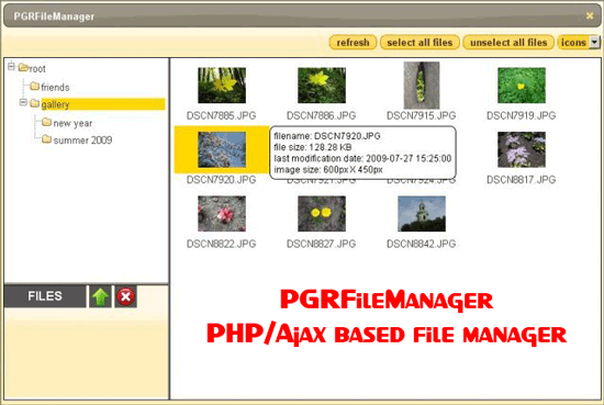 PGRFileManager